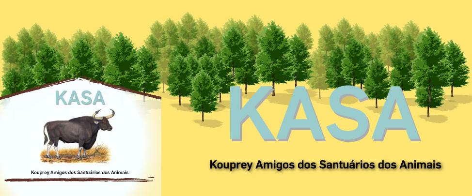 Kasa.org.br